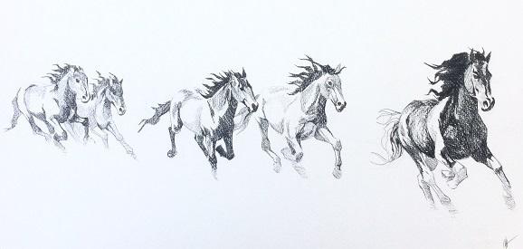 Horses Sketch R
